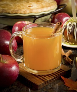 Warm Apple Cider Scented Candle
